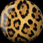 SpareFun-Viz-a-Leopard-0