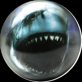 Shark (Requin)