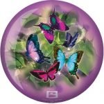 Viz-a-Ball Butterfly (Papillon) recto